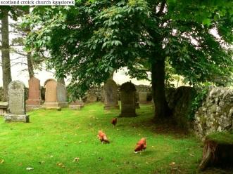 Croick Church (5)