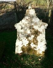 Fodderty Old Churchyard (31)