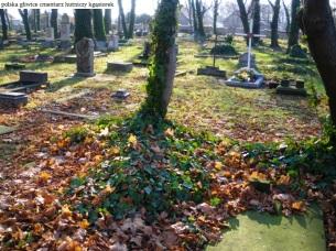 Gliwice cmentarz Hutniczy (2)