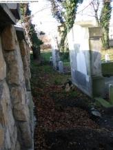 Gliwice cmentarz Hutniczy (31)