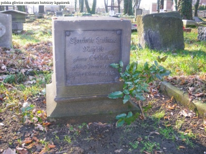 Gliwice cmentarz Hutniczy (8)