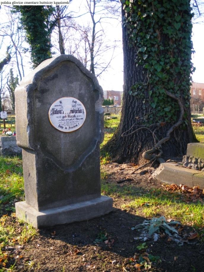 Gliwice cmentarz Hutniczy (9)