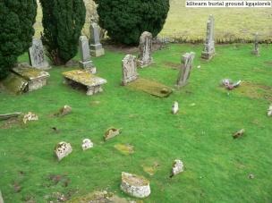 Kiltearn Burial Ground (12)