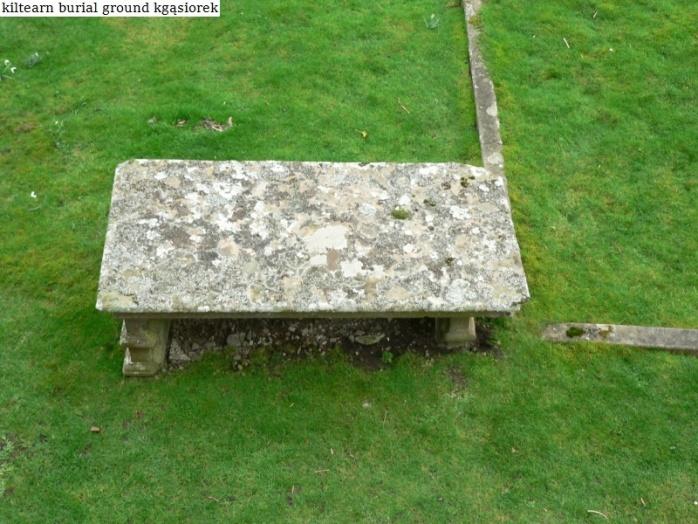Kiltearn Burial Ground (13)