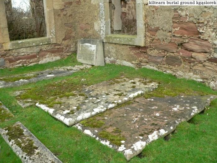 Kiltearn Burial Ground (14)