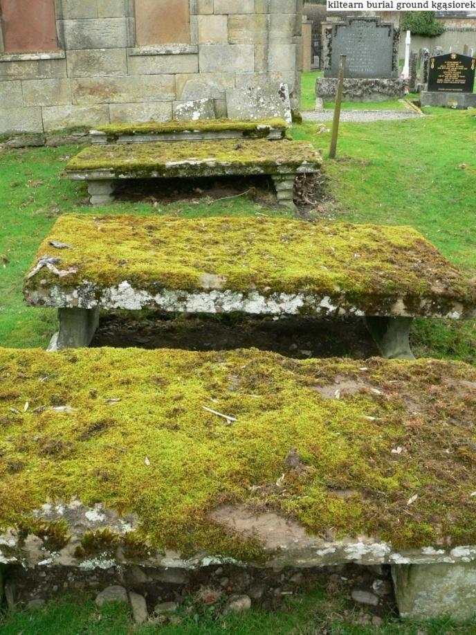 Kiltearn Burial Ground (18)