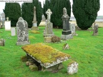 Kiltearn Burial Ground (7)