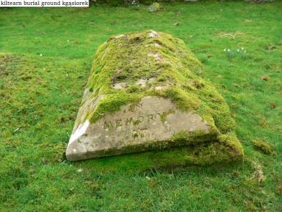 Kiltearn Burial Ground (8)