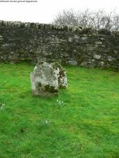 Kiltearn Burial Ground (9)