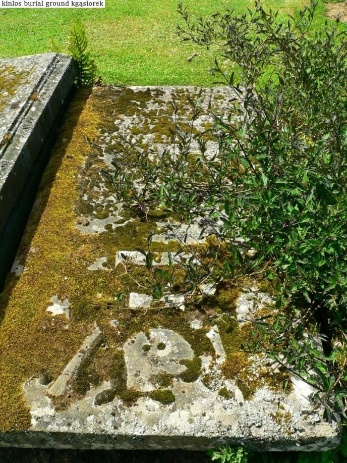 Kinlos Burial Ground (36)