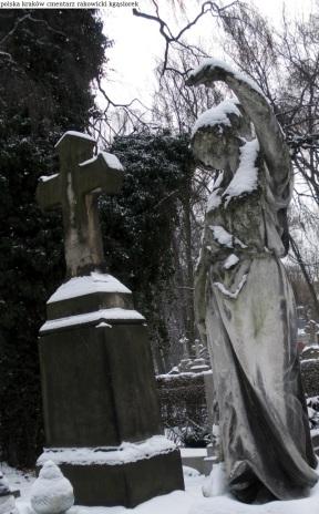 Krakow cmentarz Rakowicki (3)