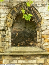 St. Andrews cathedral (16)