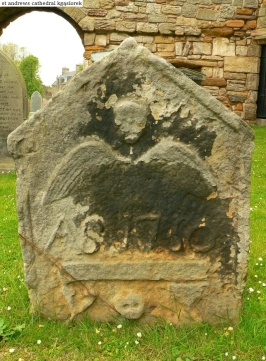 St. Andrews cathedral (18)