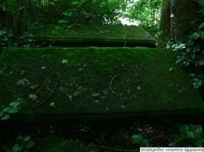 Strathpeffer cemetery (8)